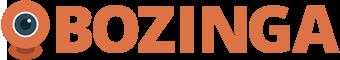 www.bozinga.com